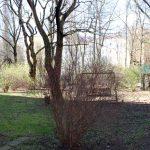 Zartes Grün: Rasen, Sträucher, Bäume. Foto: Anna Jauch