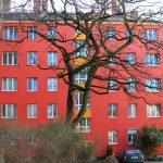 Rote Fassade mit Baum davor. Foto: Anna Jauch