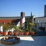 Dachterrasse Proskauer Straße, Blumentöpfe und Sandkasten